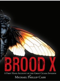 jan-06-brood-x